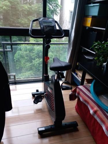 锐步动感单车怎么样哪个型号好,锐步健身车430测评